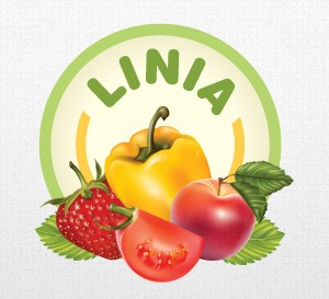 Linia logo by Qchar Design